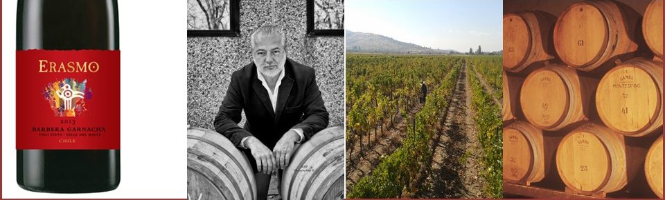 Erasmo Viña is the Must-Visit Winery in Chile