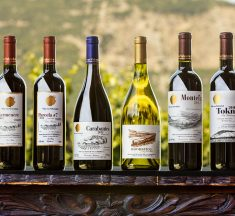Get to Know One of The Best Chilean Wine Regions Aconcagua Valley