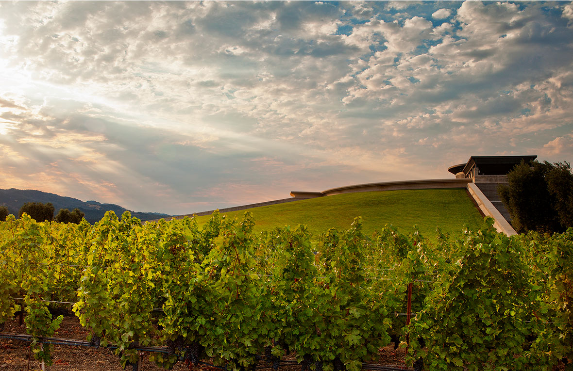 Opus One – a World Famous Napa Valley Winery
