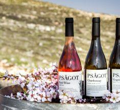 Psagot Winery – Israel's Best Wine Producer