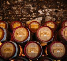 Quinta da Pacheca – Winery and Wine Hotel, Portugal