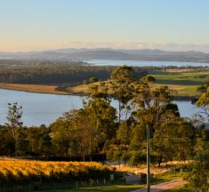 Top 30 Must Visit Wineries – Australia