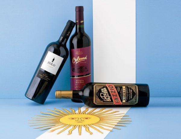 Top 15 Must Visit Wineries – Argentina