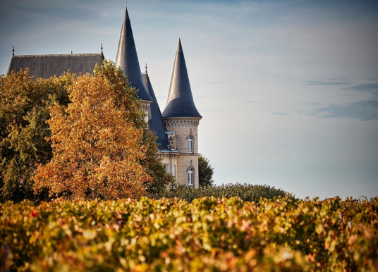 Top 3 Wineries in Champagne!