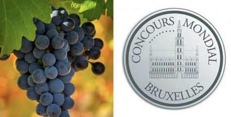 Top 10 Best Value Gold Medalist Bottles from the Concours Mondial de Bruxelles Wine Competition