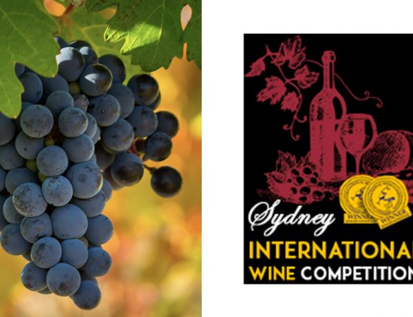 Top 10 Best Value Wines In Every Category Sydney International Wine Competition