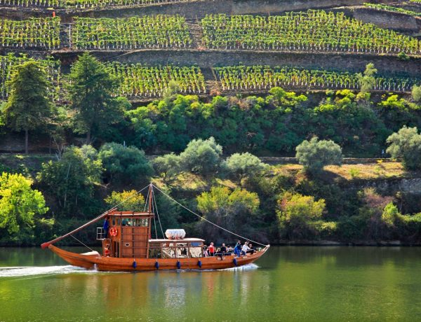 Discover 3 of the Best Vineyards in Douro Valley