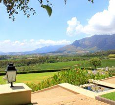 Best 5 Must Visit Vineyards in South Africa