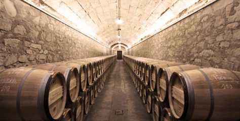 Top 10 Must Visit Vineyards in Portugal